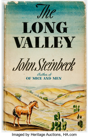 The Long Valley Published