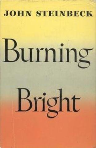 Burning Bright Published