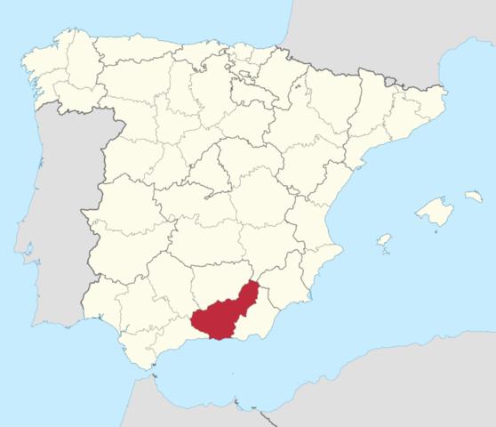 Den sidste muslimske konge blev fordrevet fra Granada