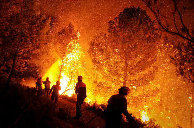 INCENDIS FORESESTALS