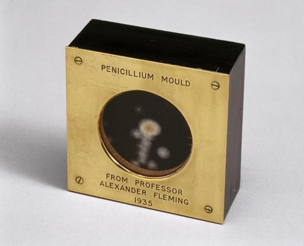 Primera Inyección de Penicilina