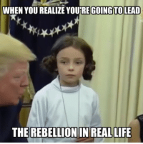 Stono Rebellion, NC