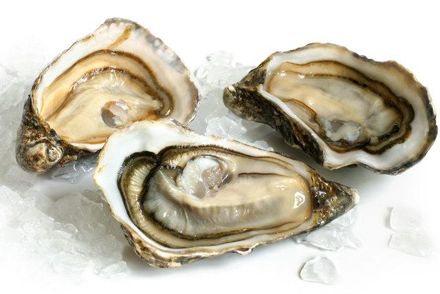 Teoria dell'ostrica (Giovanni Verga)