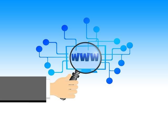 Se lanza la World Wide Web