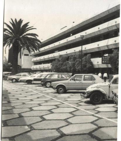 Estacionamiento en unidad I, junto a las palmeras