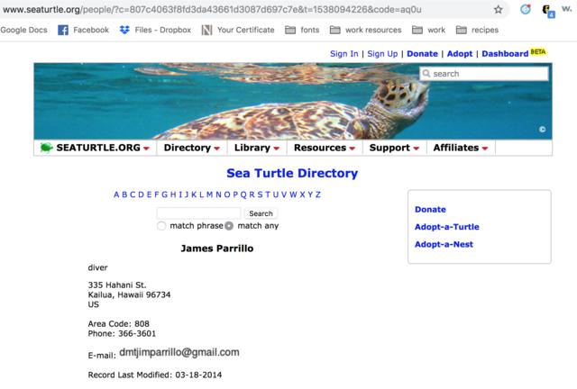 James Parrillo creates seaturtle.org profile