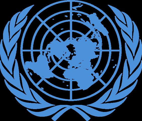 Статистика ООН