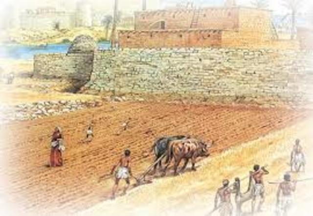 Ontstaan van landbouwstedelijke samenleving in Egypte
