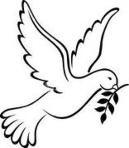 Democrats Supported by Peace Advocates