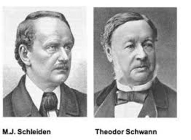 Matthias Schleiden y Theodor Schwann