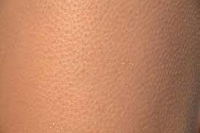 Human skin is produced for the first time in the lab.
