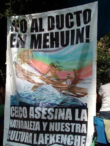 Participación en festival de medio ambiente en Santiago