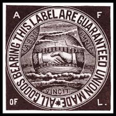 Labor Unions(Knights of Labor, American Federation of Labor, Industrial Workers of the world)