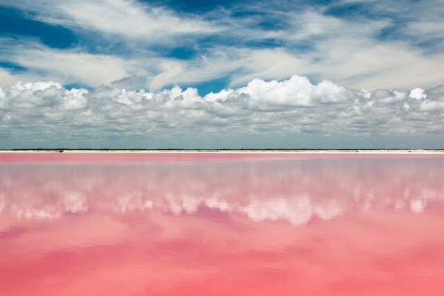 el agua es color de rosa