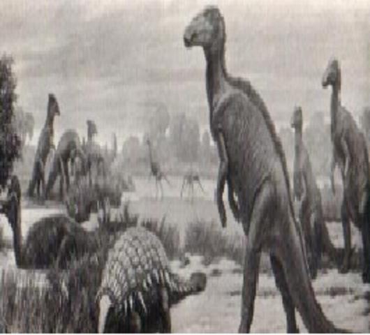 EXTINSION DE ANIMALES MARINOS