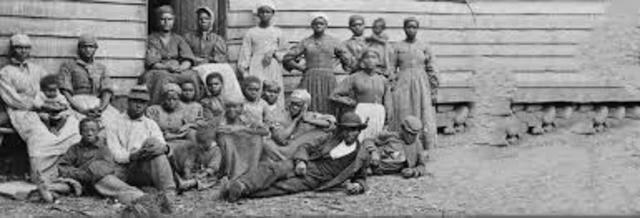 African Americans and white servants