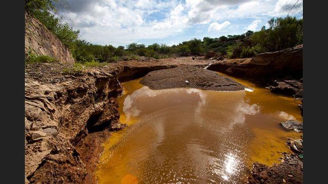 Desastre ecológico en los ríos Bacanuchi y Sonora.