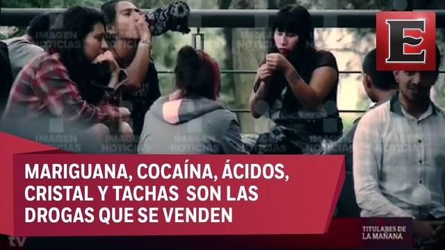 UNAM exigió una investigación por la presunta existencia de células del Cártel de Tláhuac
