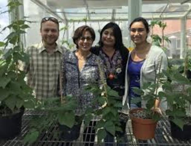2018.  Investigadores del Instituto de Biotecnología de la UNAM están nominados el Premio Newton