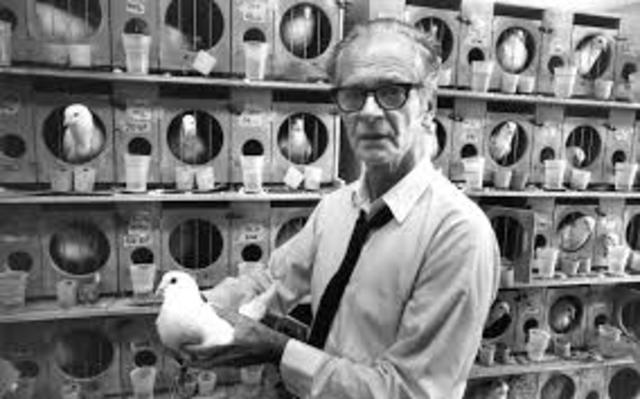 Burrhus F Skinner (1904-1990)