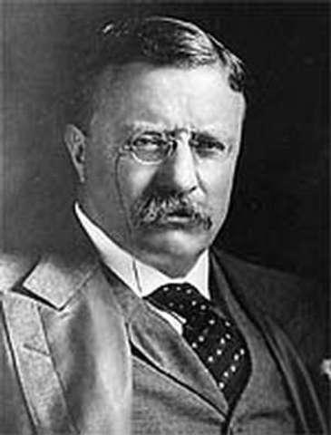 Roosevelt's Big Stick Policy