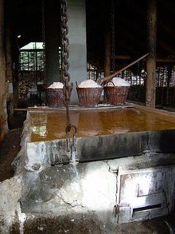 Salt blev udvundet i Nordtyskland