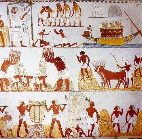 ECONOMÍA EGIPTO