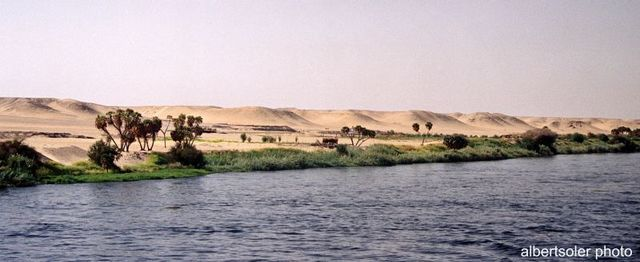 ECONOMÍA EGIPCIA