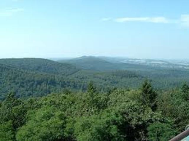 Batalla del bosc de Teutoburg
