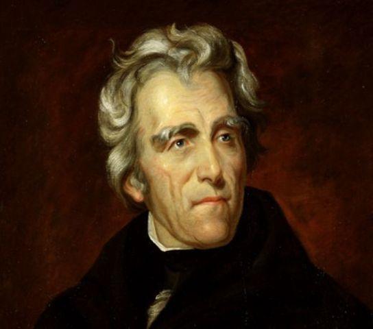 Andrew Jackson Elected President (1st Term)