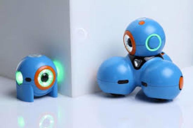 Robots Yana and Bo