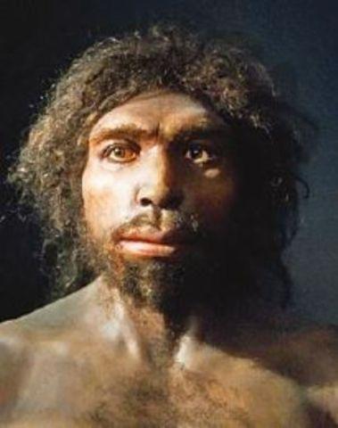 Aparición del Homo Antecessor