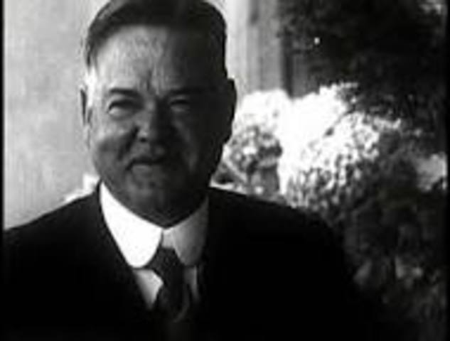 Herbert Hoover is elected president