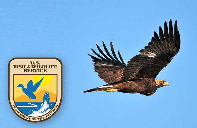 Bald Eagle Protection Act