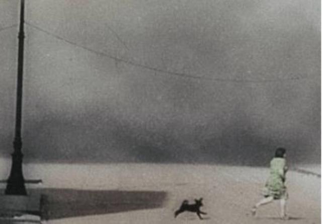 Invasion de la Pologne par l'Allemagne nazie : début de la Seconde Guerre mondiale