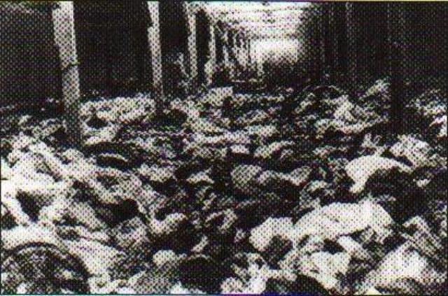 Over 100,000 Hungarian Jews were gassed in Auschwitz
