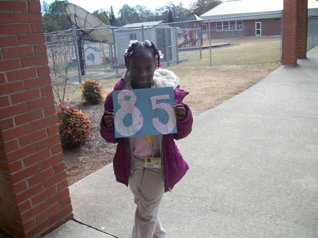 The Eighty Fifth Day of School