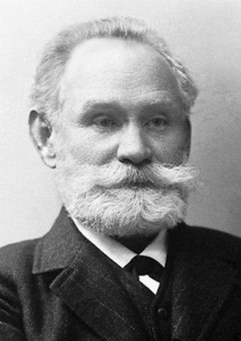 Pavlov - A madridi 14. Nemzetközi Orvoskongresszuson közzétette az emésztőrendszer idegi szabályozásáról kialakított elméletét