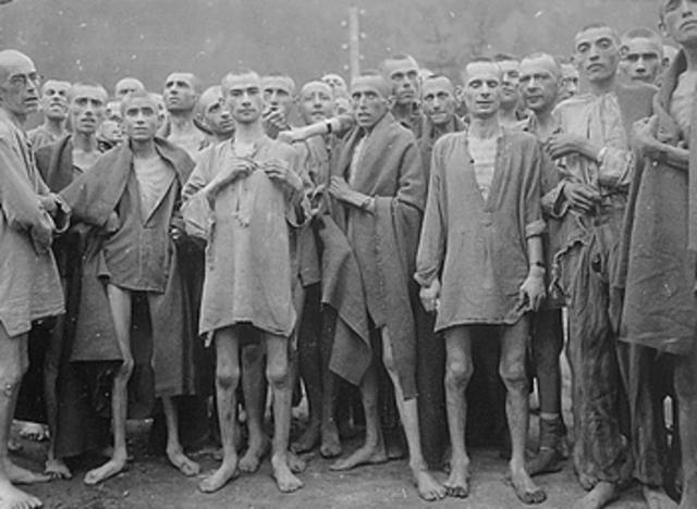 In Auschwitz