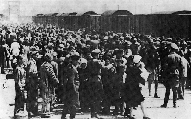 Displaced persons camp