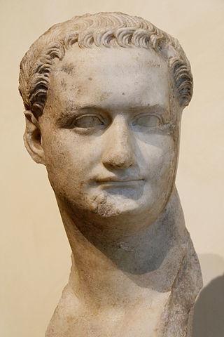 Домициан ( 81 – 96 гг. н.э. ). Династия Флавиев