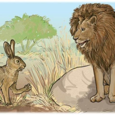 The Lion, The Hare, and the Hyena