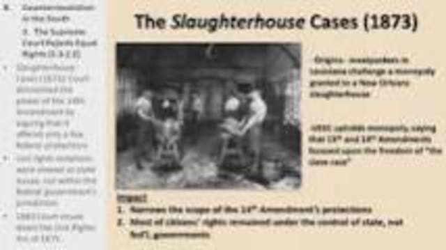 Slaughterhouse Cases(Supreme Court)