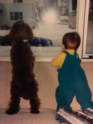 My Childhood Dog Dies