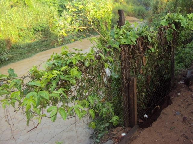 Chuva provoca danos no Niterói