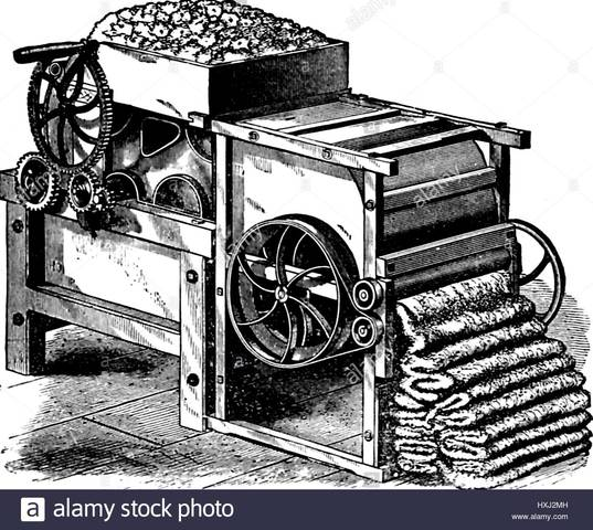 Evolution of the Cotton Gin