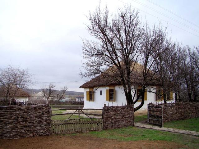 В 1919 году Шолоховы возвращаются в Каргин