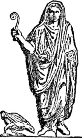Ogulnian Law