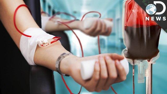 Primera transfusión sanguínea exitosa