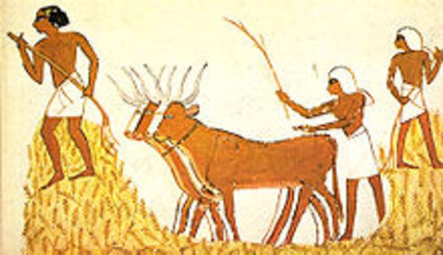 Aparece la agricultura en Egipto